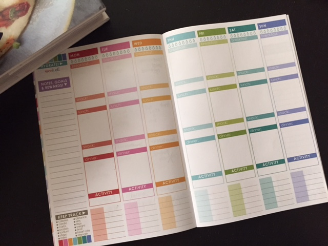 Erin Condren Wellness Journal