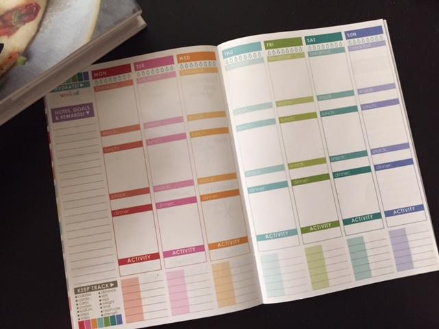 Erin Condren Wellness Journal